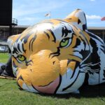 Deflated tigers are a sad thing.